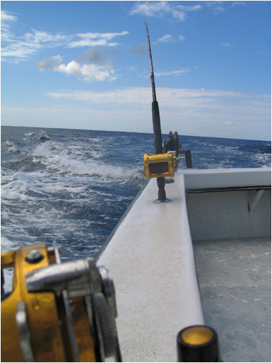 Fishin Poles on the Caribbean sea