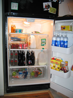 MTV Cribs Fridge